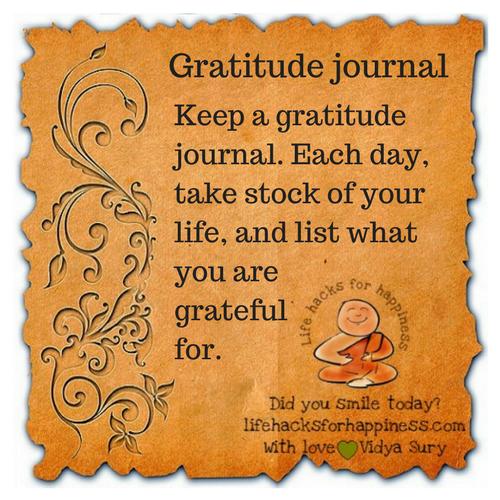 gratitude journal vidya sury